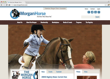 morganhorse.com screenshot